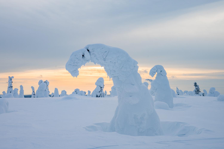 Verschneite Winterlandschaft bei Sonnenuntergang.